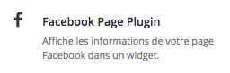BoutonWidgetFacebook