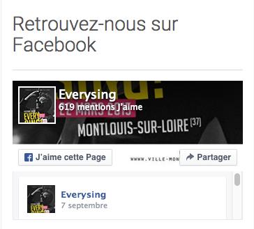 Afficher sa page Facebook sur son site