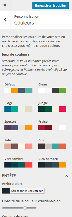 Choisir les couleurs de son site Internet
