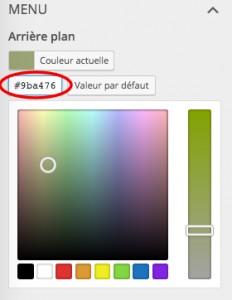 code couleur personnalisation et widget