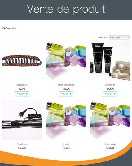 cr er un site internet de coiffeur domicile 6temflex cr er un site internet professionnel. Black Bedroom Furniture Sets. Home Design Ideas