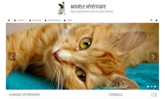 Créer un site pour son cabinet vétérinaire