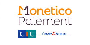 Image result for monetico logo